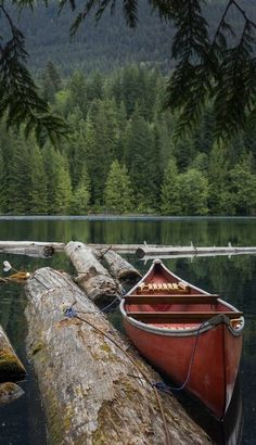 canoe on the lake in the forest / woods / camping aesthetic / rustic photography / green and brown Beautiful World, Beautiful Places, Wonderful Places, Canoe And Kayak, Canoe Trip, Lake Life, Adventure Is Out There, Belle Photo, The Great Outdoors