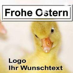 web-design, web banner, Web Banner, Flyer, Design Web, Grafik Design, Animals, Graphics, Poster, Gifts, Animales