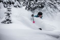 Skier, Keegan Capel in deep again at Sunshine Village. @sunshinevillage