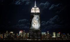 Illuminating the Plight of Endangered Species, at the Empire State Building - The New York Times