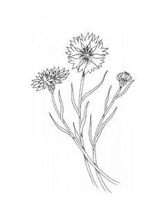 dessin-de-fleur.jpg (600×800)