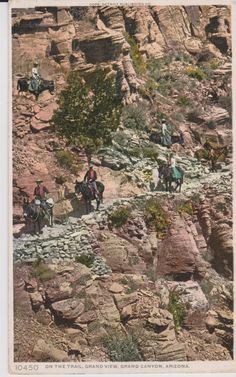 On The Trail Grand View Grand Canyon Arizona by postcardsofthepast