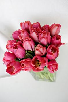 I would love to come into a room and be greeted by this beautiful gift of tulips