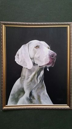 Wiemeraner Oil on canvas by Jacqueline Dravetz