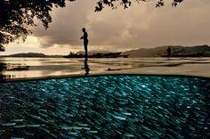 Lago com peixes emDampier, na Indonésia-À luz do crepúsculo, no estreito Dampier, na Indonésia, uma lente parcialmente submersa capta a vida humana acima e as águas abaixo faiscando de peixinhos