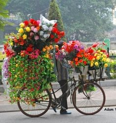 .Vendedor de flores