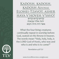 The TLV Bible Society are the creators of the Tree of Life Bible, spearheaded by Daniah Greenberg and a team of over 70 Bible Scholars. Hebrew Prayers, Biblical Hebrew, Hebrew Names, Hebrew Words, Hebrew Sayings, Aramaic Language, Adonai, Bible Society, Learn Hebrew