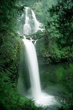 Falls Creek Falls, Carson, WA   © Marsha K. Russell