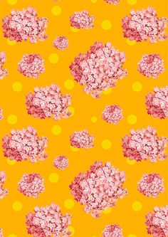 hydrangea and polka dot pattern by laura redburn