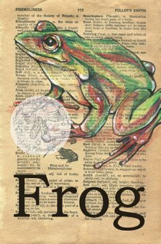 Frog drawing on 1948 dictionary page - flying shoes art studio