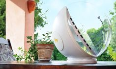 Solenica founder Diva Tommei designed Lucy: a smart, solar-powered natural lighting system which gathers sunlight and shines it indoors.