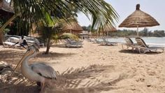 Senegal, with its beaches, food and friendly people, is an ideal choice for a first-time visitor to West Africa. Senegal Travel, Africa Travel, Senegal Africa, French West Africa, Parts Unknown, Travel Memories, Culture Travel, World Cultures, Holiday Travel