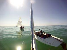 sailing, sunfish, lake michigan