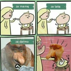 wszystkie memy z neta :v # Humor # amreading # books # wattpad Funny Images, Funny Pictures, Generator Rex, Me Too Meme, Online Portfolio, Wtf Funny, Best Memes, Social Networks, Haha