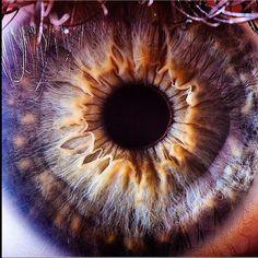 Non c'è macchina fotografica al mondo migliore dell'occhio umano!  --->  #photo #eyes #iride #occhioni #pupilla #colori #wonderful