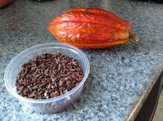 #Cocoa nibs add crunch and flavour to spice up your fruit & yogurt. Try it! You'll find them  at fine #chocolate shops & at some health food stores as they're high in antioxidants.