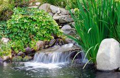 Umelé jazierka v okrasných záhradách | Štýlové Bývanie Terrarium Diy, Garden Waterfall, Small Pools, Outdoor Pool, Koi, Beautiful Images, Environment, Growing Plants, Pond Construction