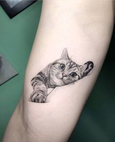 Cat tatoo tatoo ideas cat tattoo designs, cat tattoo a tatto Cat Tattoo Designs, Unique Tattoo Designs, Unique Tattoos, Beautiful Tattoos, Simple Mens Tattoos, Cute Animal Tattoos, Cute Cat Tattoo, Tattoo Animal, Cat Tattoo Black