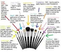 Tutorial for makeup brushes, man do I need this! Had no idea what half the brushes I had were for.
