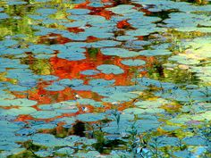 Monet  - I love the dance of colors in his work