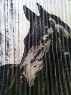 horse art--one of Gods beautiful creatures...