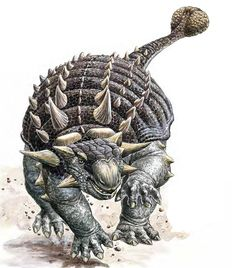 Ankylosaurus was an armored dinosaur that lived at the very end of the Cretaceous Period between about Ma ago in western North America. Ankylosaurus was about 30 ft long 5 feet at the hip, and weighed in excess of tons This dinosaur. Prehistoric Dinosaurs, Prehistoric World, Prehistoric Creatures, Dinosaur Art, Dinosaur Fossils, Reptiles, Mammals, Jurrassic Park, Dinosaur Pictures