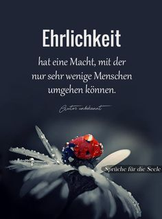 (notitle) - words of wisdom - German Quotes, German Words, True Words, Good To Know, Quotations, About Me Blog, Wisdom, Thoughts, Education