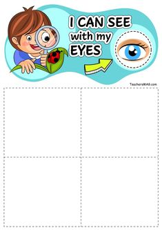 """Five Senses Sorting Activity for Preschool, Pre-K, and Kindergarten Students. This sorting activity is a stellar addition to any unit about the five sense or which is, """"All about me. Five Senses Preschool, 5 Senses Activities, My Five Senses, Autism Activities, Sorting Activities, Preschool Worksheets, Infant Activities, Kindergarten Classroom, Kindergarten Activities"""