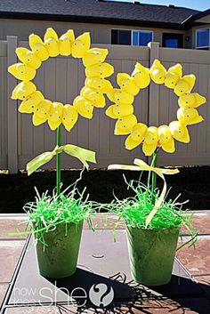 Yellow Peep Sunflowers - peeps - peep decor ideas #peepsunflowers