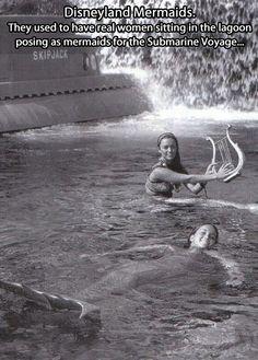Disneyland Mermaids