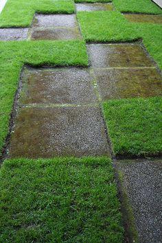 Zen garden pathway!
