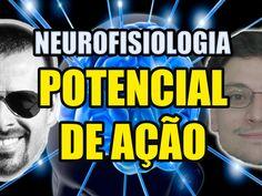 Vídeo Aula 130 - Neurofisiologia/Biologia Celular: Potencial de Ação (de...