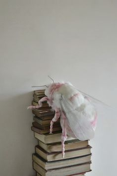 Pink moth soft sculpture atop a stack of books. Insect Crafts, Insect Art, Textile Sculpture, Soft Sculpture, Book Crafts, Arts And Crafts, Diy Crafts, Craft Books, Cute Moth