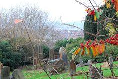 Knock Burial Ground by belfastcitycouncil, via Flickr