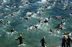 tips for open water swimming