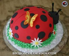 Ladybug Cake Decorating Southbury Ct