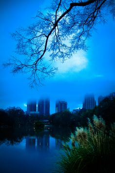 Piedmont Park - December, Atlanta, Georgia