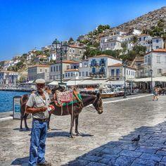 ggouthas via Instagram #Greece #Ellas #Hellas #Ελλάδα  Hydra harbour http://instagram.com/p/p50nOpSW-V/?modal=true
