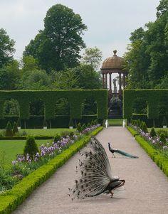 Hier wäre viel Platz für ein paar schöne Gartenstecker von #weltbild ;-)