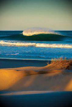 The Beach Life (: