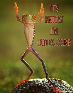 It's Friday I'm Outta Here quotes quote friday happy friday tgif days of the week friday quotes friday love happy friday quotes Weekend Humor, Friday Weekend, Happy Weekend, Funny Weekend, Hello Weekend, Happy Wednesday, Happy Friday Pictures, Happy Friday Quotes, Friday Sayings