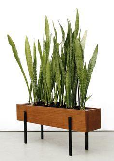 Image result for modern indoor plant box scandinavian