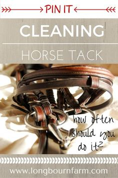 How often should you clean your tack? More often than you think! Check out this pin for a good schedule and some helpful tips!