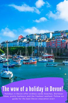 As 2021 goes down as the Year of the UK staycation, we round up some of our bloggers' favourite Devonshire haunts, eateries and activities. From miles of sandy beaches and inland attractions to Torbay treats, Devon's clearly the place to be! 👈 🤩 #VisitDevon 🤩 #UKstaycation Visit Devon, Devon Holidays, Devon Cottages, Devon And Cornwall, Dartmoor, Exeter, Future Travel, Sandy Beaches, Wow Products