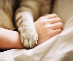 I love it that our pets love us as much as we love them.... what blessings they are...♥♥♥