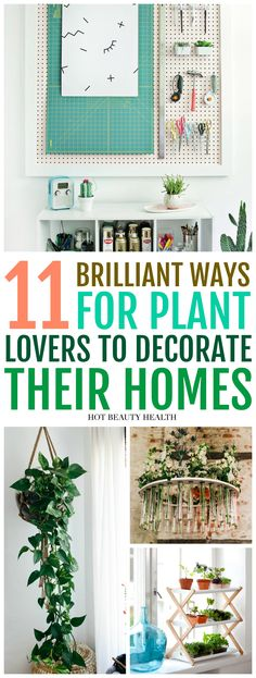 11 unexpected home decor ideas with houseplants. Live in a small space or large apartment? Then you\'ll love the creative ways to add indoor plants inside your living room, bedroom, kitchen and other places inside your home this spring. Hot Beauty Health #houseplants #decoratewithplants #homedecor #plants #hotbeautyhealth