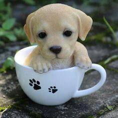 Hi-Line Gift Ltd. Te Hi-Line Gift Ltd. Teacup Labrador Puppy Statue - cooking tips Baby Animals Super Cute, Cute Baby Dogs, Cute Little Puppies, Cute Dogs And Puppies, Cute Little Animals, Cute Funny Animals, Cute Cats, Tiny Puppies, Cute Animals Puppies