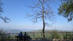 Dobogókő körséták,kilátók Budapest, Mountains, Nature, Plants, Travel, Viajes, Naturaleza, Destinations, Planters