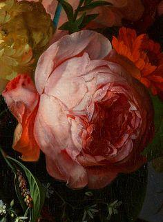 Rachel Ruysch Still Life Painting - Detail Beautiful Flower Quotes, Beautiful Roses, Botanical Illustration, Botanical Prints, Rennaissance Art, Baroque Painting, Merian, Encaustic Art, Oil Painting Flowers