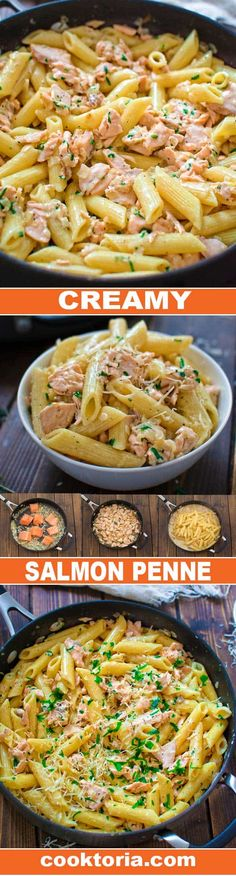 This simple and elegant One Pot Creamy Salmon Pasta makes a quick and filling dinner that your family will love! Visit Cooktoria and make this scrumptious salmon dinner today! #salmon #dinner #pasta #seafood #fish #penne #recipeoftheday #dinnerrecipe